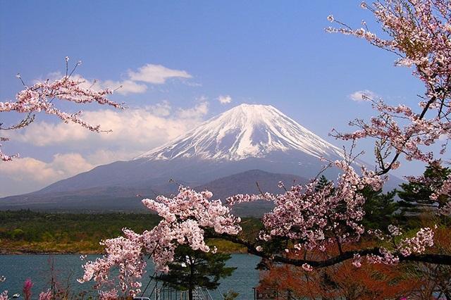 Top 8 địa danh nổi tiếng ở Tokyo nhất định phải biết